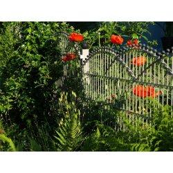 Ihr Neuer Zaun Bis 60 Cm Auf Zaunsysteme Direkt De