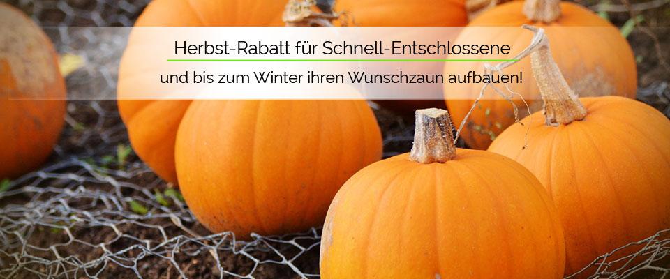 Herbst-Rabatt: 3% Rabatt - schon ab einem Bestellwert von   500,- Euro.